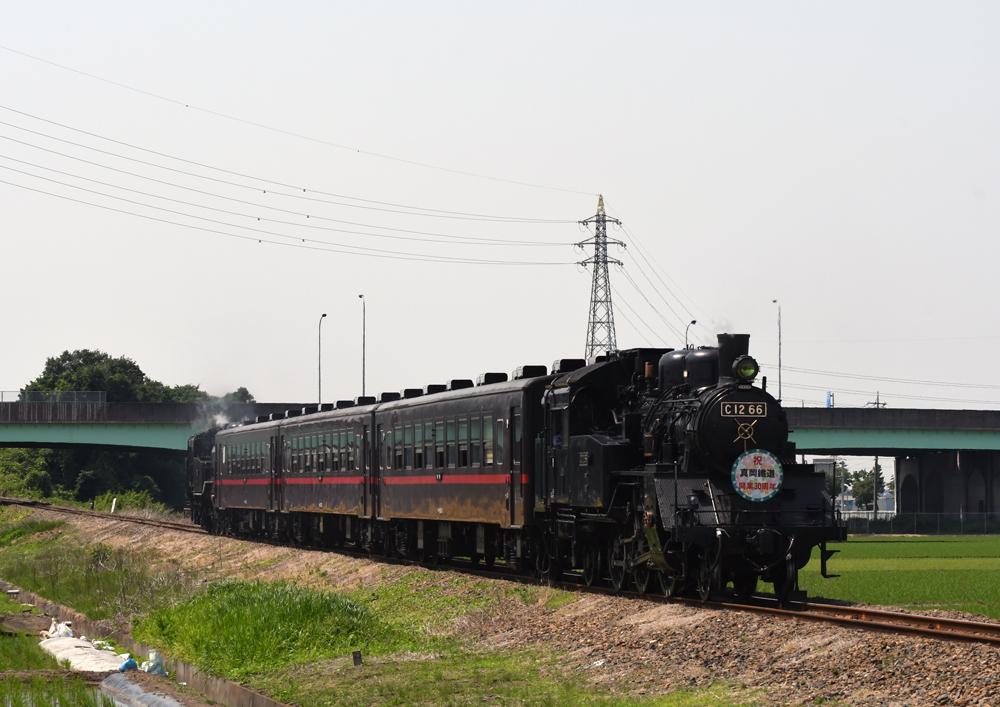 W180527dsc_4901